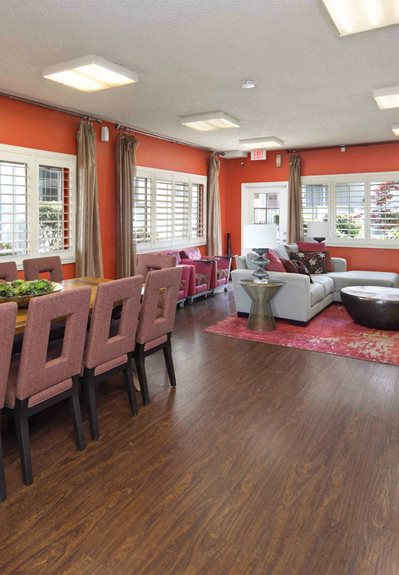 Sunnyvale Theme Right Image 5