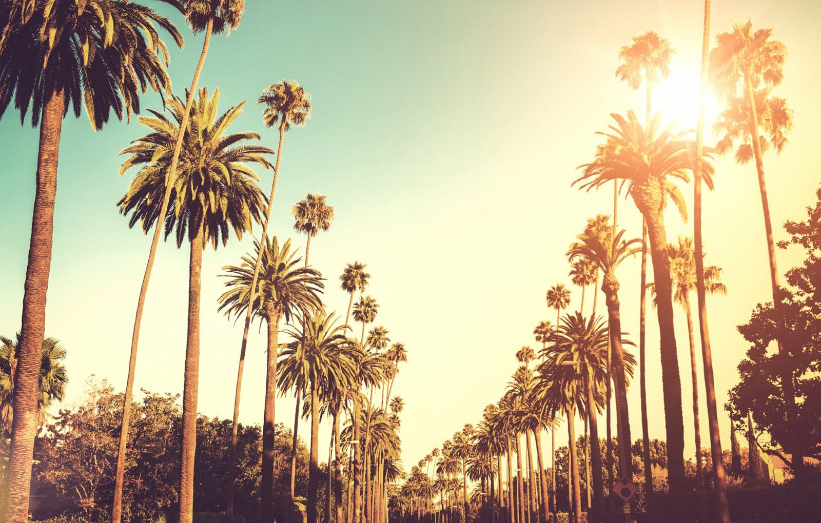 Los Angeles background 1