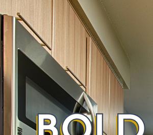 Bold New Look - Kitchen