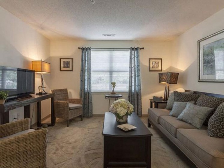 Large Windows and Spacious Interiors at Quail Run Apartments in Stoughton, MA