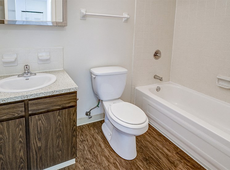 Apartment Bathroom at The Woods of Eagle Creek