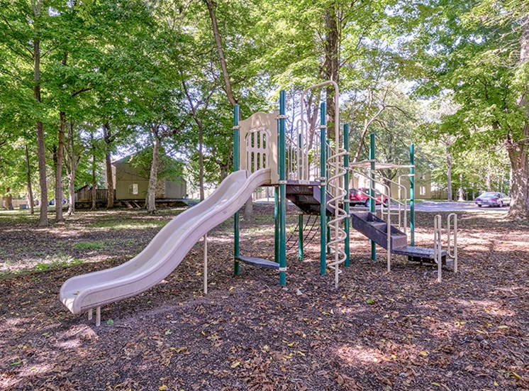 Playground equipment and slide at The Woods of Eagle Creek