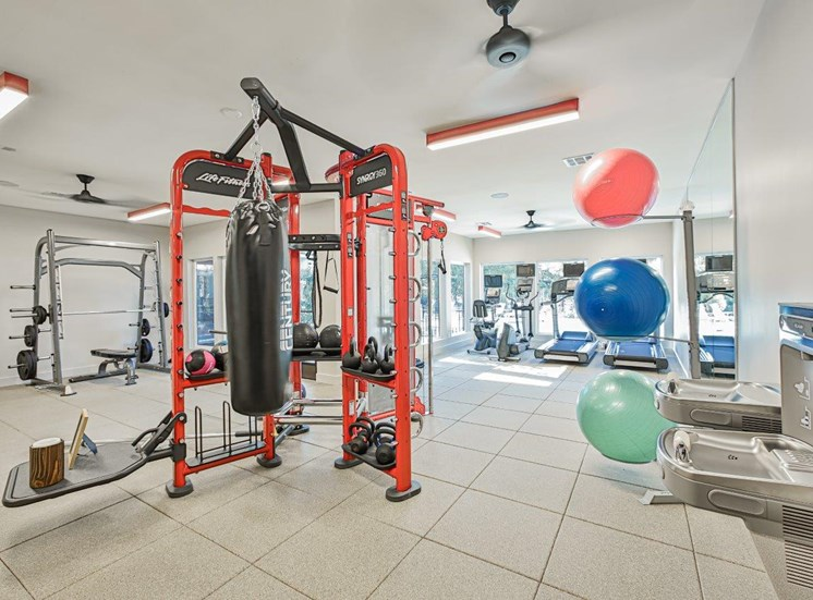 Punching Bag and Exercise Balls