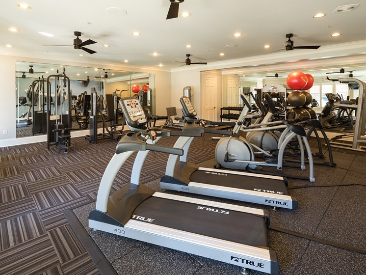 Body Shop with Cardio & Free Weights at The Berkeley Apartment Homes, Duluth, GA 30096