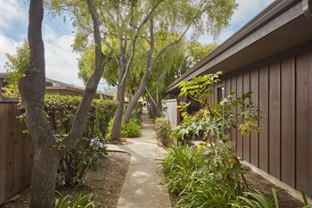 1370 Byron Drive 1-2 Beds Apartment for Rent Photo Gallery 1