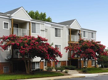 9206 Oswald Way 1-3 Beds Apartment for Rent Photo Gallery 1