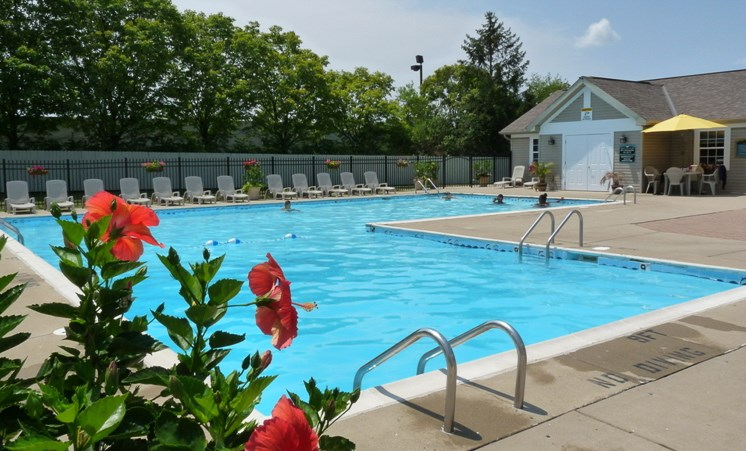 Apartments in West Carrollton, OH Pool