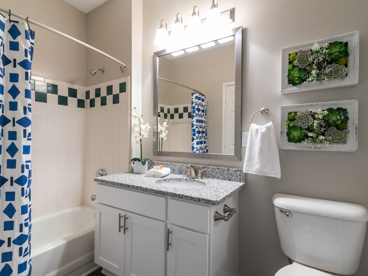 Upgraded Bathroom at The Village Apartments, Raleigh, NC