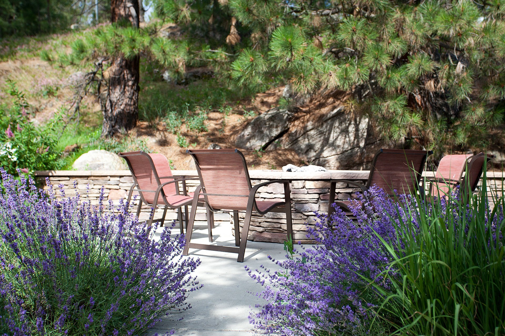 Pine Valley Ranch Apartments Outdoor Fire Pits