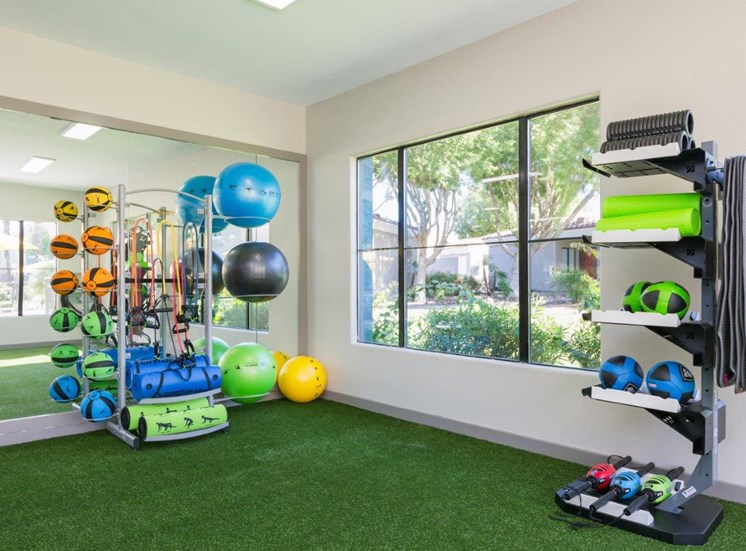 Fitness center cross fit area
