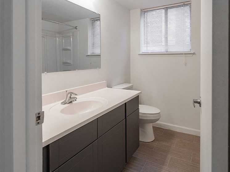 Upgraded Bathroom Fixtures at Lafayette Park Place - Detroit, MI, Detroit, 48207