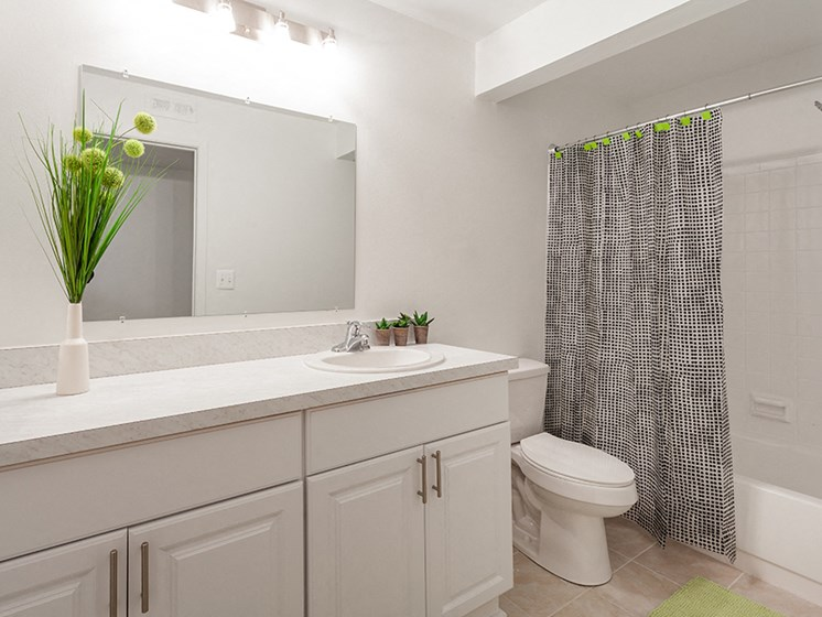 Upgraded Bathroom Fixtures at Lafayette Park Place, Michigan