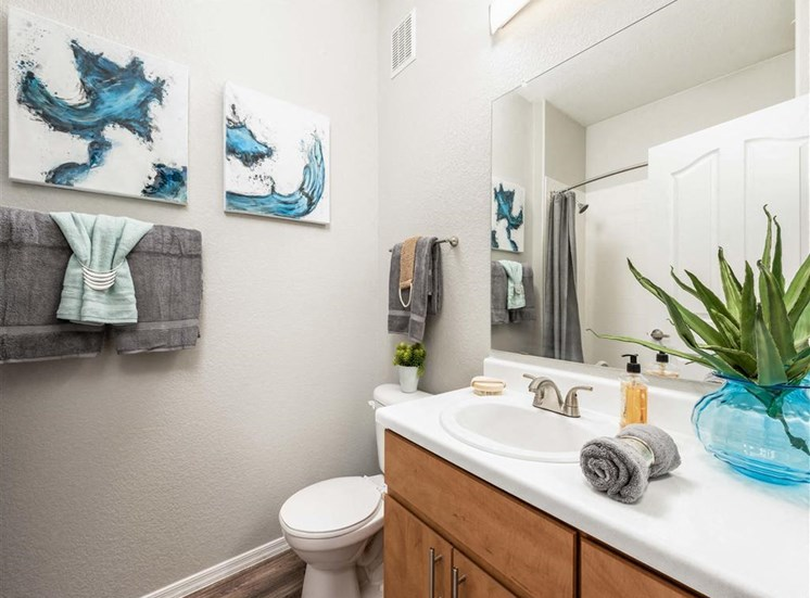 Apartments for Rent in Avondale, Arizona - Oceana Apartments Bathroom