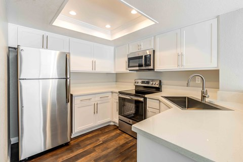 Upgraded Black or Stainless-Steel Appliances