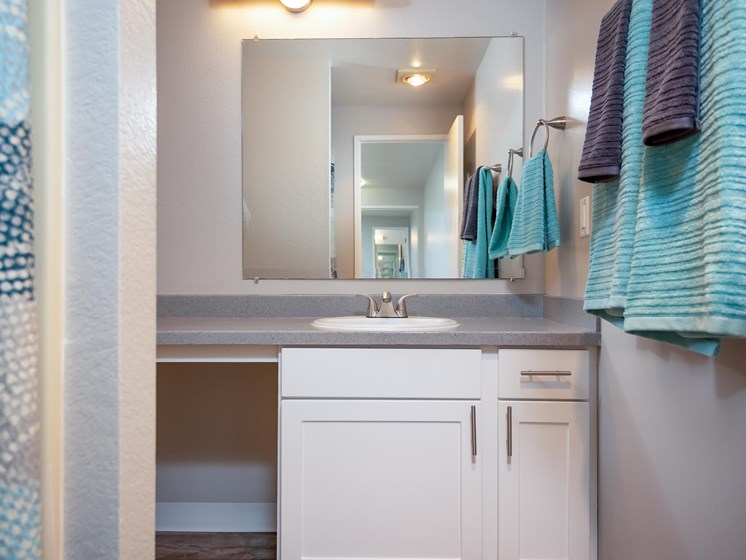 Coho Run Apartments | Two Bedroom | Bathroom