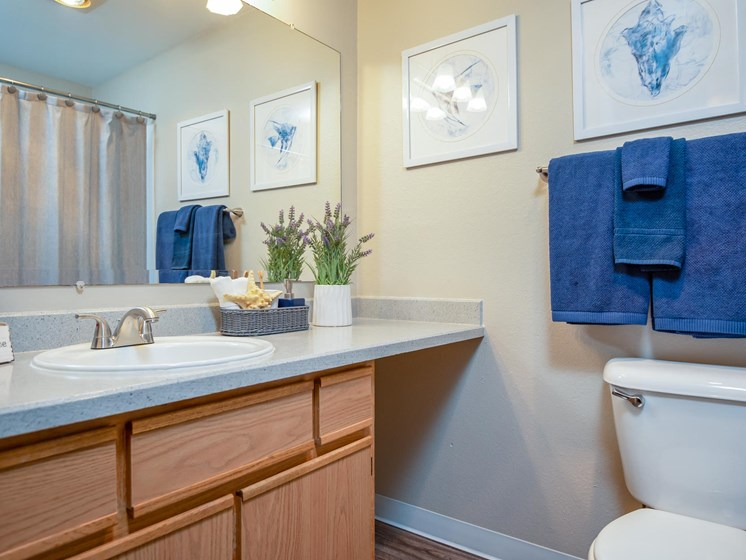 Kings Meadow Apartments | Troutdale, OR | Second Bathroom