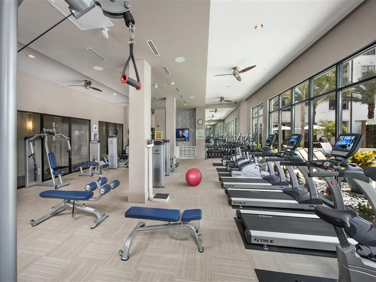 Fully Equipped Fitness Center at Azul Baldwin Park, Orlando, FL