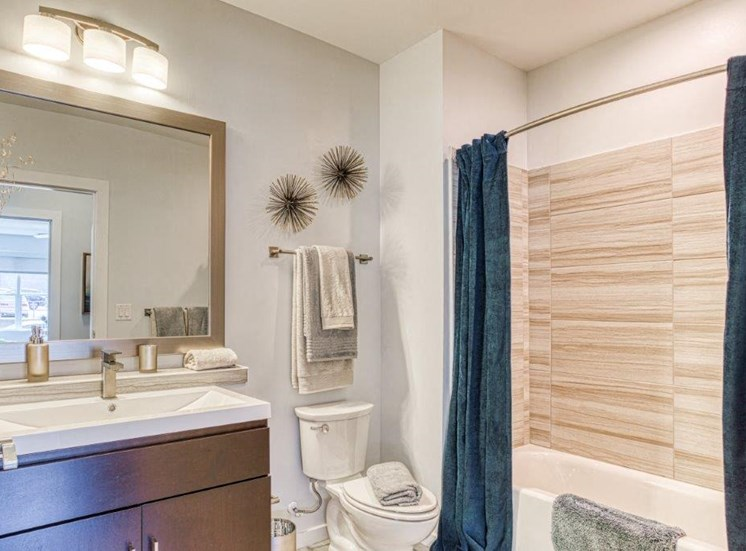 Spa-Inspired Bathrooms at Carroll at Bellemeade, Greensboro, NC 27401