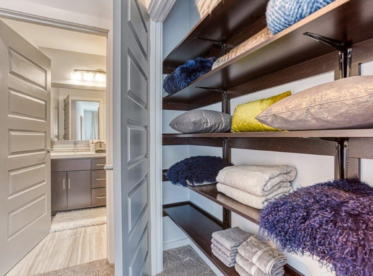 Closets with Built-in Shelving at Carroll at Bellemeade, Greensboro, North Carolina