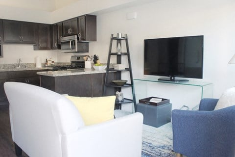 Model apartment home living room and kitchen