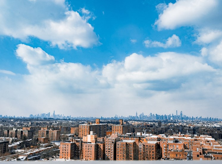 NYC Skyline from a Parker terrace
