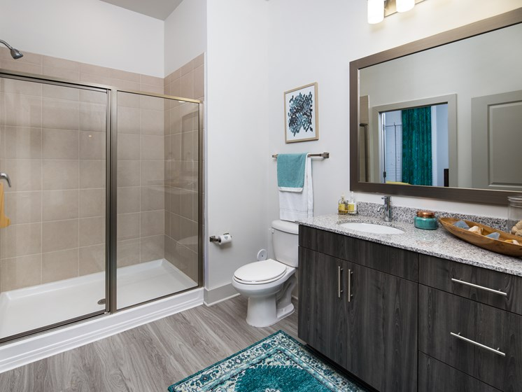 Walk-In Oversized Shower at The Flats at Ballantyne Apartments, Charlotte, NC