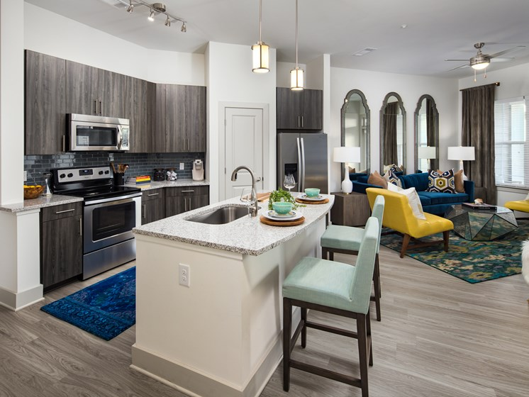 Sleek Interior Finishes at The Flats at Ballantyne Apartments, Charlotte, North Carolina