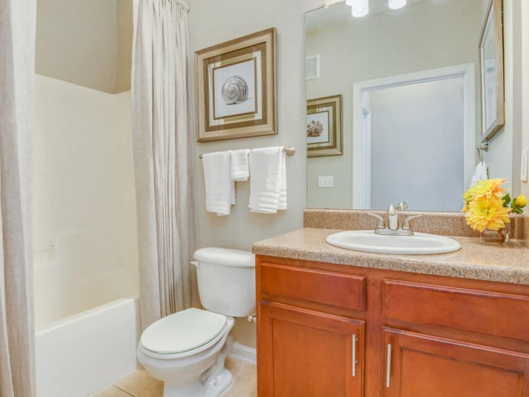 Spacious Bathroom with Relaxing Garden Tub at Reserve Bartram Springs, Jacksonville, FL, 32258