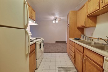 4357 13Th Ave S Ste 102 2 Beds Apartment for Rent Photo Gallery 1