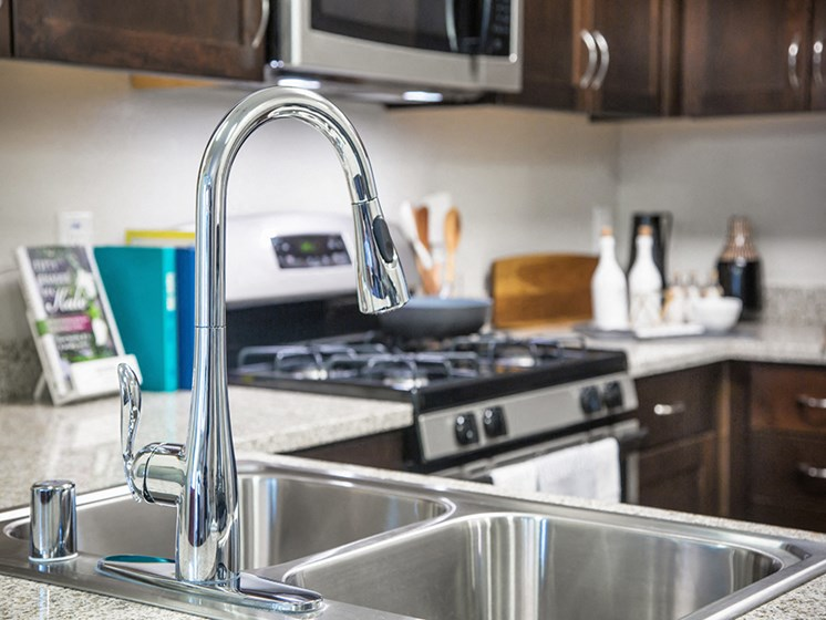 Model Kitchen Sink Fixtures