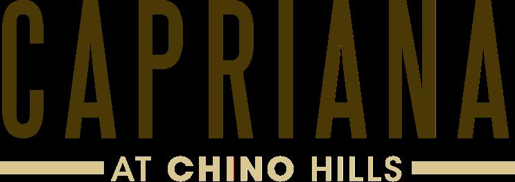 Chino Hills Property Logo 1