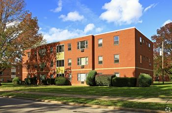 37411 Grove Avenue 1-2 Beds Apartment for Rent Photo Gallery 1