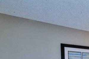 Altura on Duneville - Las Vegas NV - Living Room
