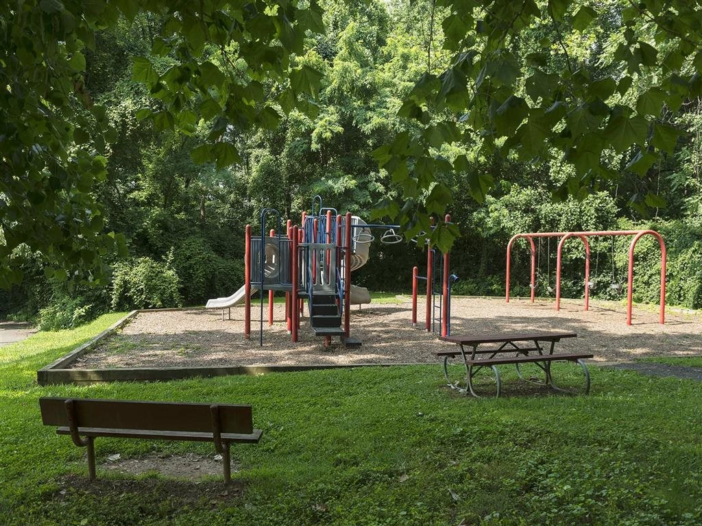 Playground surrounded by lush green landscaping