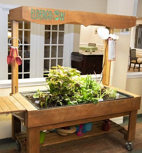 Green Friendly Community at Savannah Court & Cottage of Oviedo, Oviedo, FL