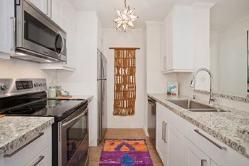 1515 2nd St Studio-2 Beds Apartment for Rent Photo Gallery 1
