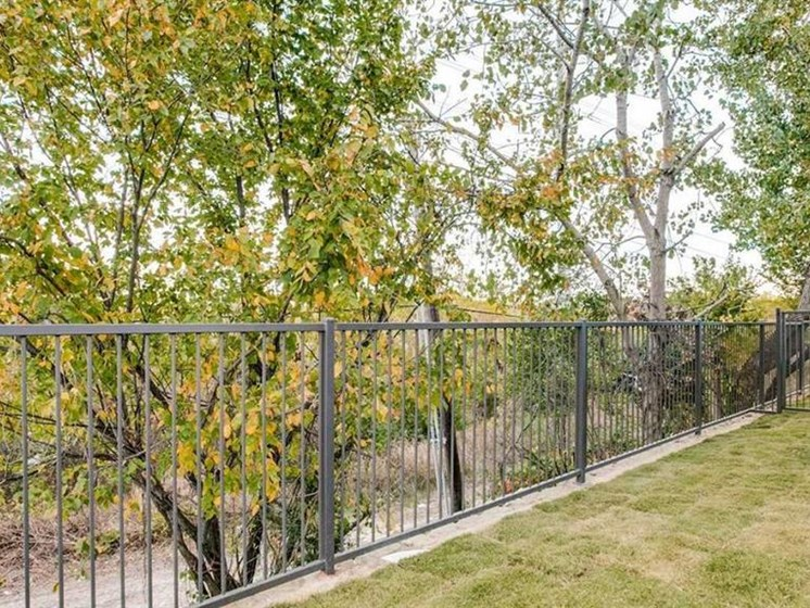 Gated, Fenced On-Site Dog Park