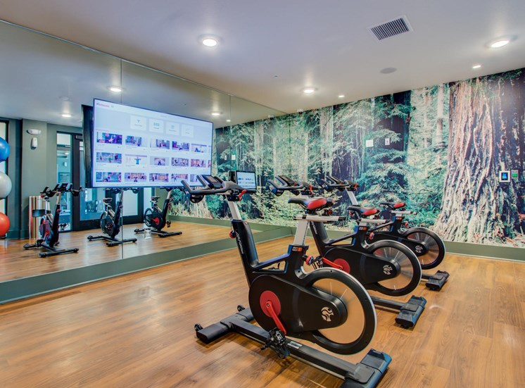 Fitness Center With Yoga/Stretch Area at Rise at 2534, Johnstown, 80534