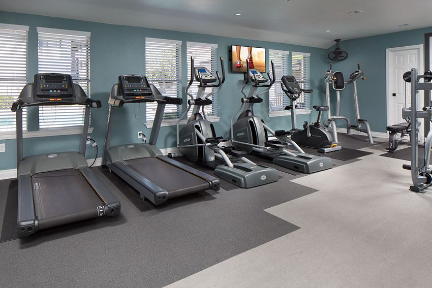 Sorelle Apartments Upgraded Fitness Center with treadmills and other cardio equipment, teal accent walls, and grey flooring
