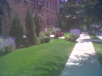 5590 N. Diversey  Studio-1 Bed Apartment for Rent Photo Gallery 1