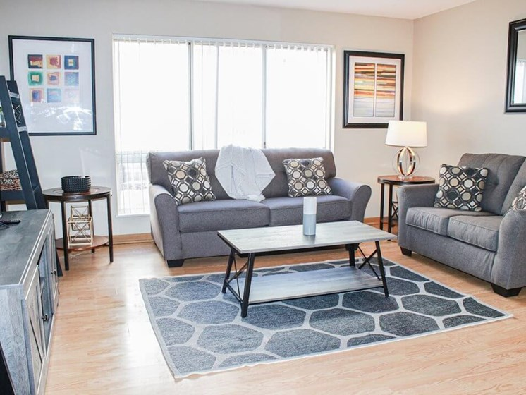 large living room in Rochester MN apartments