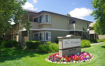 2355 Meadow Way 1 Bed Apartment for Rent Photo Gallery 1