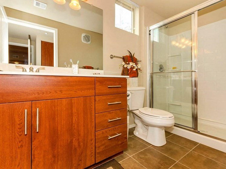 Model apartment home bathroom