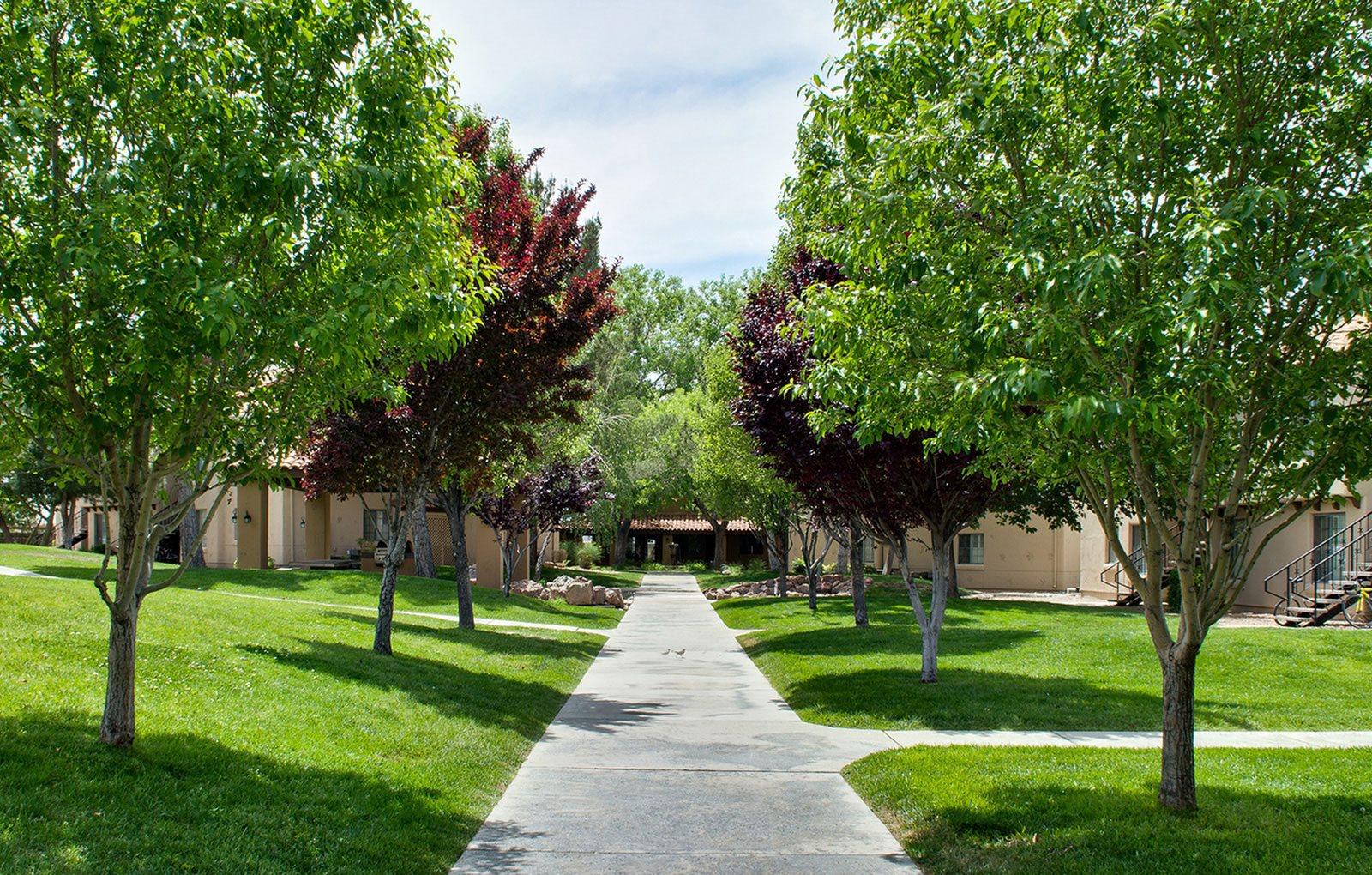Albuquerque background 2