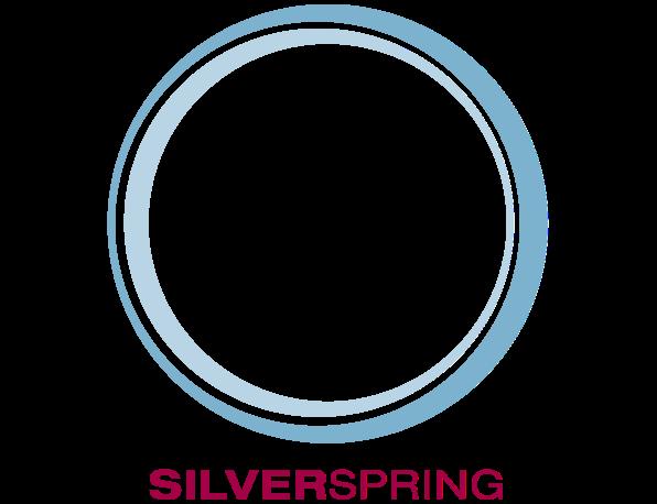 Silver Spring Property Logo 6
