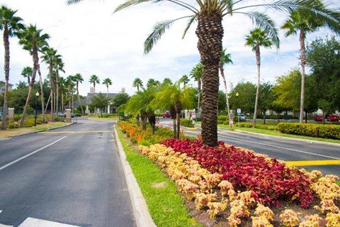 Beautiful Gardening at Westchase, Fort Myers, Florida