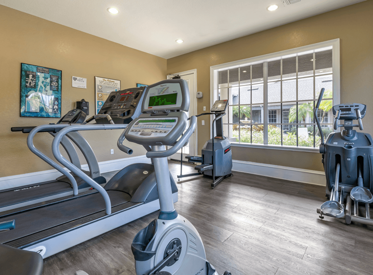 Fitness Center Cardio Equipment and Large Window