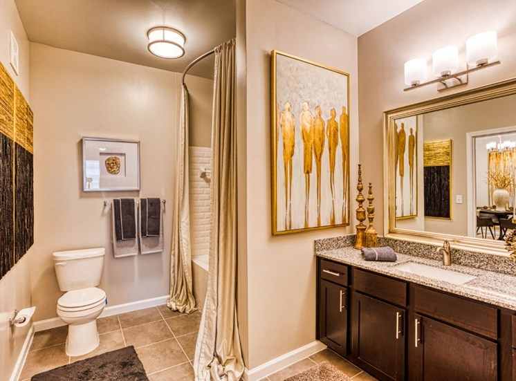 Luxurious Bathrooms, at Carroll at Rivery Ranch, Georgetown