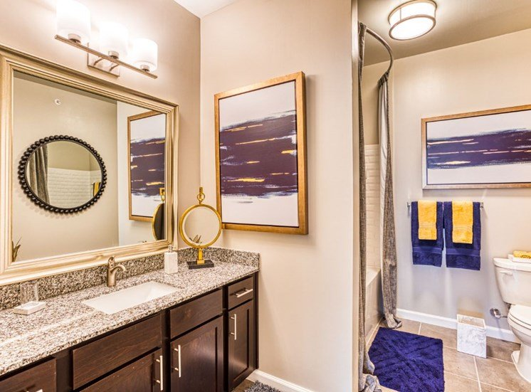 Spa-Inspired Bathrooms, at Carroll at Rivery Ranch, Georgetown, TX