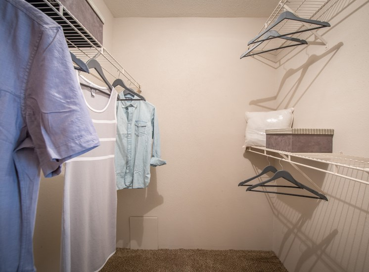 Steeplechase apartments in knoxville, TN walk-in closet 3